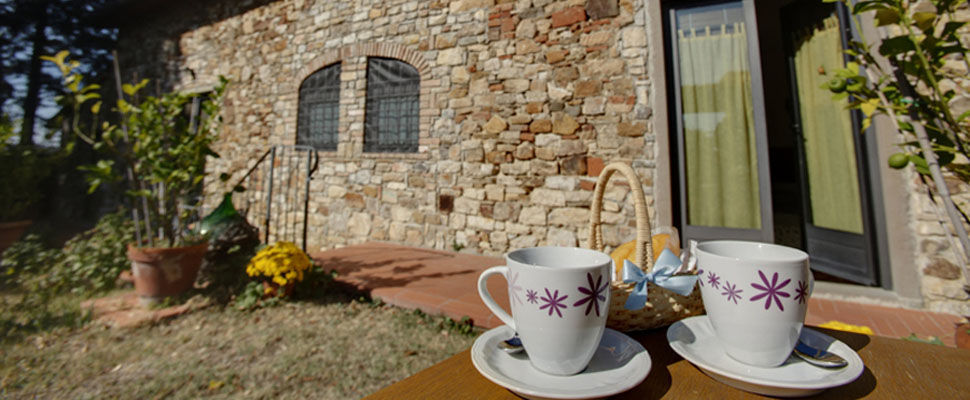 Bed and Breakfast in Toscana, Chianti, vicino Firenze | Ancora del Chianti