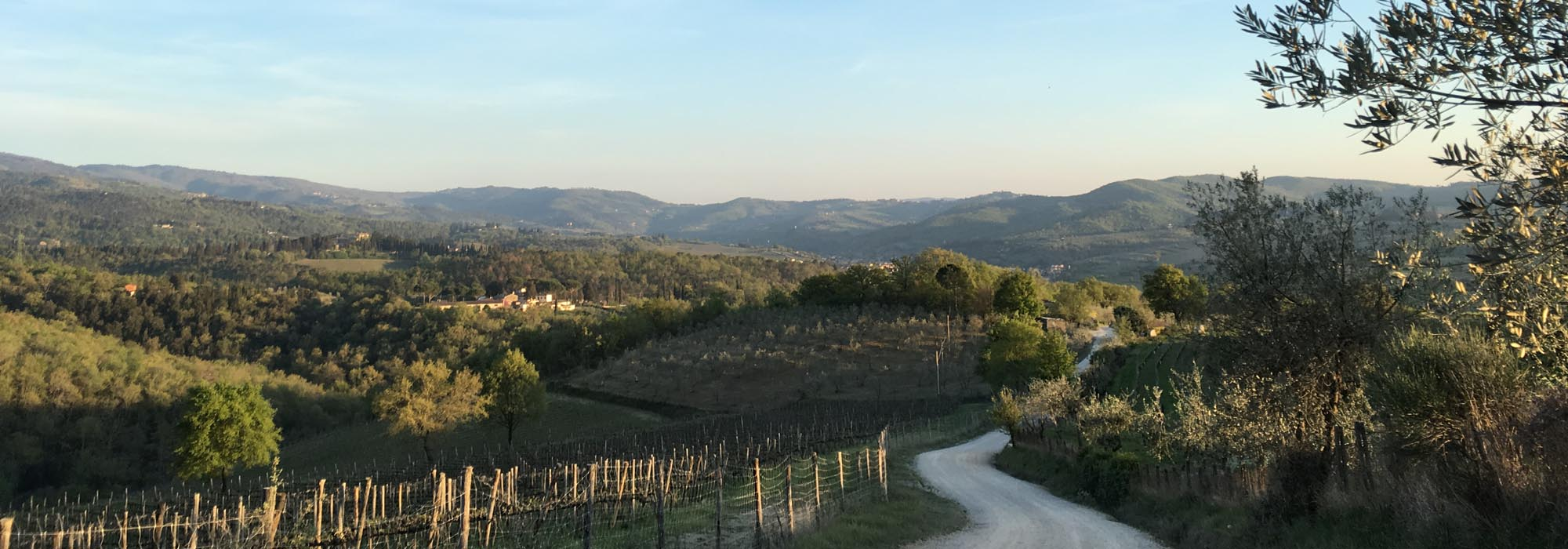 Bed and Breakfast Greve in Chianti near Florence - B&B Ancora del Chianti