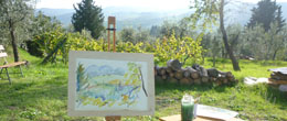 Experiences in Tuscany at B&B Ancora del Chianti